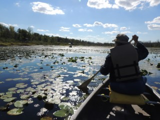 Joanne in Canoe on the Swamp