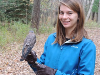 Volunteers from Central Michigan University get a chance to work directly with the birds.